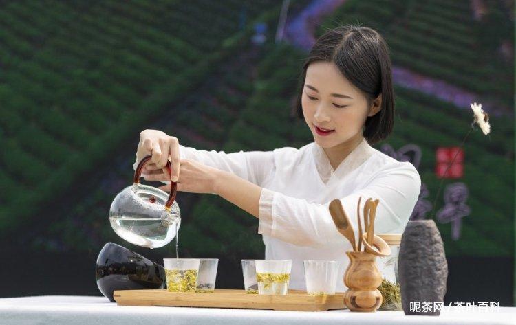 茶艺的基础知识,茶艺的十三个步骤图解
