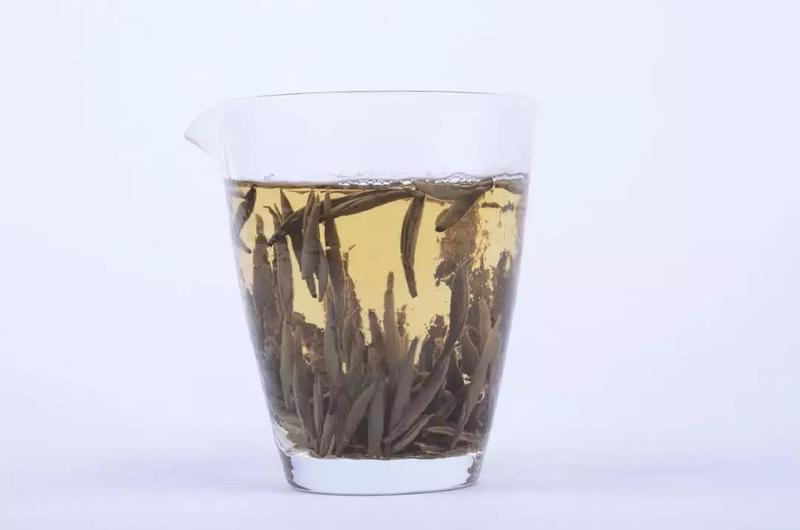 白茶清欢无别事,我在等风也等你