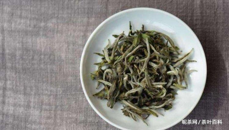 常见的白茶有哪些?白茶有哪些品种?