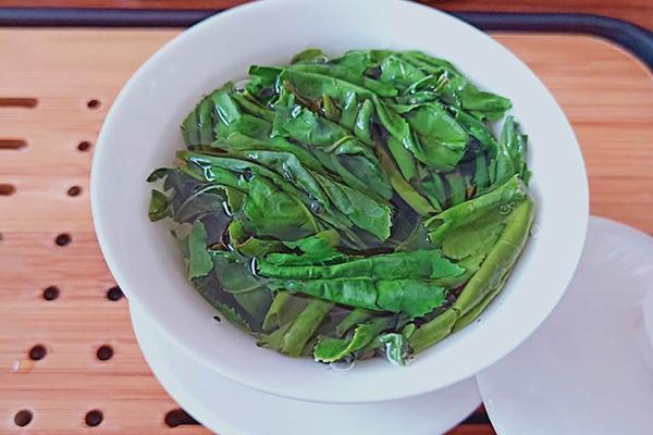 安徽六安瓜片茶多少钱一盒(正宗的六安瓜片多少钱一斤?)