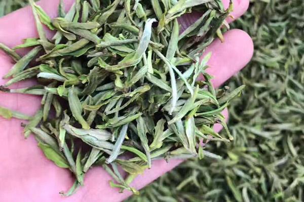 黄山毛峰茶价格及图片(黄山毛峰新茶的挑选技巧)