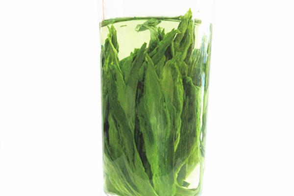 太平猴魁属于什么茶是白茶吗(太平猴魁茶产地与茶叶特点)