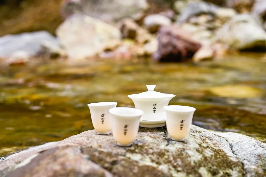 泡茶用水的选择(择泡茶用水时,一般使用什么水)
