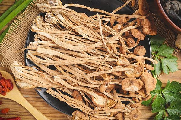 茶树菇的功效与作用(茶树菇是什么)
