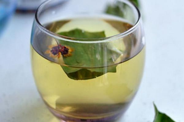 冬天能喝荷叶茶吗(荷叶茶的功效与作用)