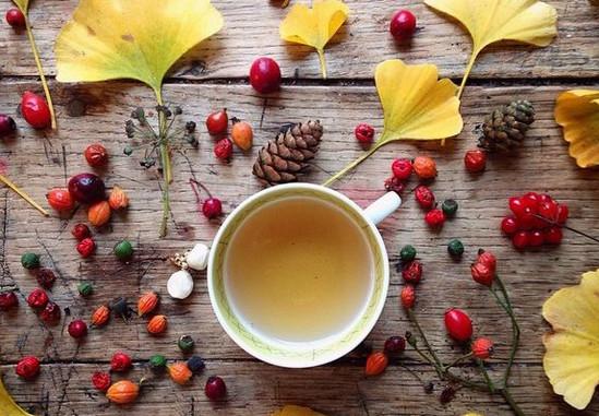 润肠通便的花茶有哪些(润肠通便的花草茶怎么泡)