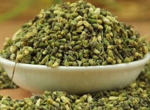 喝槐花茶有什么作用(槐花是一种中药材,平时直接泡茶喝有毒,这种说法正确吗?)