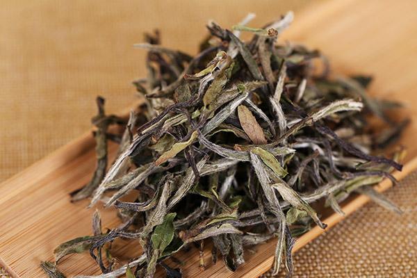 白茶的功效与作用(喝白茶需要注意什么)