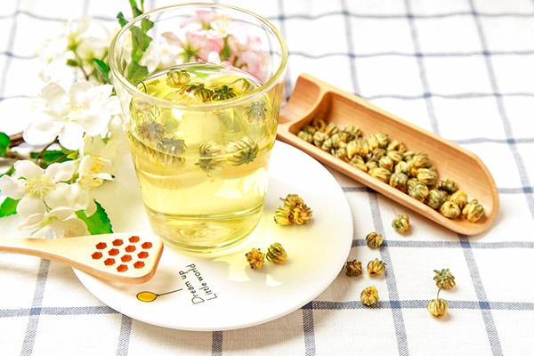 菊花茶可以天天喝吗(喝菊花茶有什么好处和坏处)
