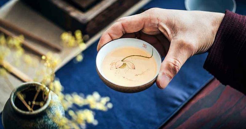 乌龙茶是红茶还是绿茶(谈谈大家对乌龙茶的认识)