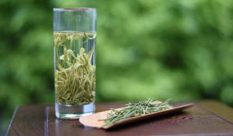 口感最好的绿茶是什么品种(不同的绿茶品牌,突出风味大有不同)