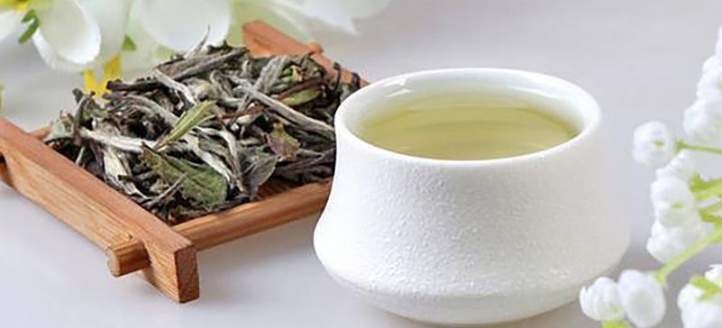 常见的白茶有哪些品种(白茶是微发酵茶,中国的六大茶类之一)