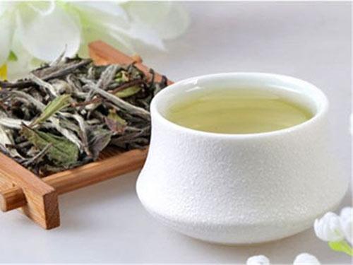 白茶的功效与作用(常白一杯茶可冲泡四分五次)