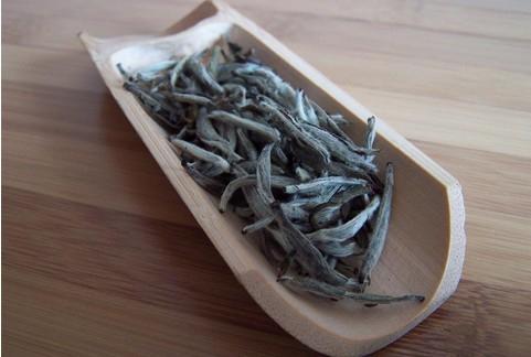 白茶的功效(安吉白茶茶氨酸含量比普通茶高1)