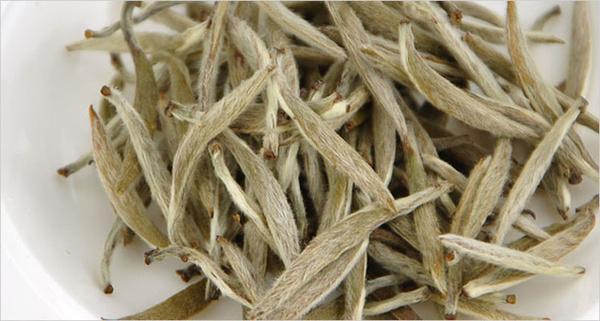 白茶的功效与作用(白茶公主将创造一个新的时尚茶!)