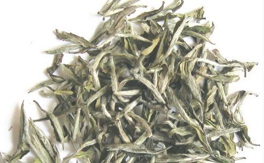 白茶的保健功能有哪些(常喝白茶有什么好处)