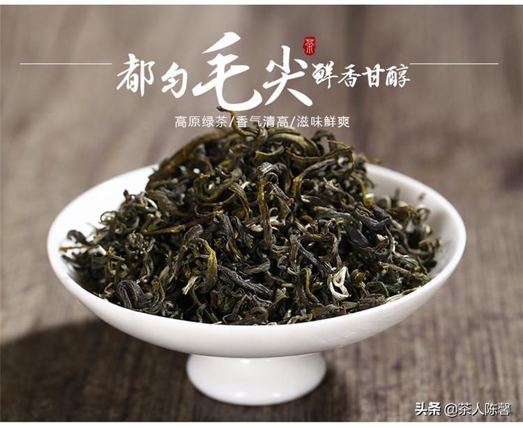 产茶大省贵州茶代表——你不知道的都匀毛尖